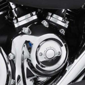 Harley-Davidson Motor Co. Timer Cover 25600068