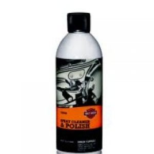 Spray Cleaner & Polish 93600084
