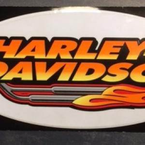 HARLEY-DAVIDSON DECAL 30X14 CM D233387