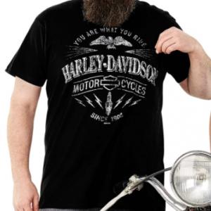 MEN'S HARLEY-DAVIDSON RIDE SPART POCKET T-SHIRT R001538