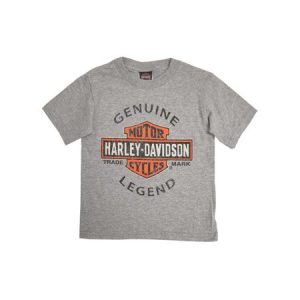 HARLEY-DAVIDSON® KIDS' GENUINE LEGEND T-SHIRT, GREY